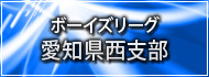 ボーイズリーグ愛知県西支部