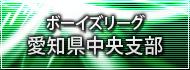 ボーイズリーグ愛知県中央支部